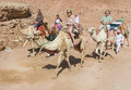 Tourists riding camels Stock Image