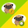 Tow happy dog pug with coins Royalty Free Stock Photo