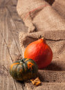 Tow mini pumpkins on old wooden table and sackcloth Royalty Free Stock Image
