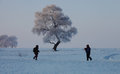 Tow photographers by a rime tree in winter the songhua river in jilin province of china has frozen leafs on tall is covered with Royalty Free Stock Image