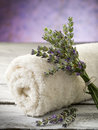 Towel with lavender Stock Images
