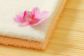 Towels and orchid flower Stock Photography