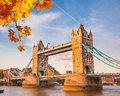 Tower bridge in london with autumn leaves Royalty Free Stock Images