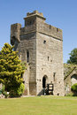 Tower, Caldicot Castle Stock Image