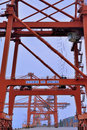 Tower crane on dock xiamen fujian china container and goods yard operation in province shown as working and operations in cargo Royalty Free Stock Images