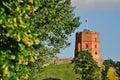 Tower of Gediminas Royalty Free Stock Photo