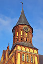 Tower koenigsberg cathedral kaliningrad formerly koenigsberg russia of the of gothic th century symbol of the city of before Royalty Free Stock Image