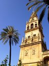 Tower of Mezquita Royalty Free Stock Image