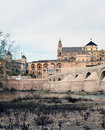 Tower of the Mosque of Cordoba Stock Image
