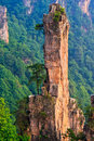 Towering Stone Pillar in Tianzi Mountain Royalty Free Stock Photos