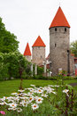 Towers of Tallinn. Estonia Stock Photos