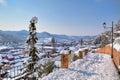Town Under The Snow. Cornelian...