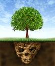 Toxic Soil