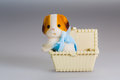 Toy box and doggie made from plastic a Royalty Free Stock Photography