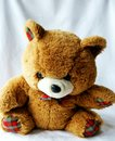 Toy brown bear Stock Photography