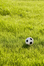 Toy football on the grass Royalty Free Stock Images