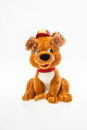 Toy puppy teddy in the cap Stock Image
