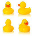 Toy rubber duck Royalty Free Stock Photo