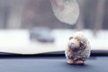 Toy Sheep Background At Car