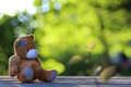Toy teddy bear table outdoor Royalty Free Stock Photo