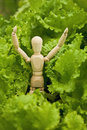 Toy wooden little man among salad leaves Stock Images