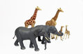 Toy zoo animals with a mix of elephants and giraffes with a isolated white background Royalty Free Stock Photos