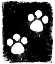 Traces of the animal on pavement vector illustration Stock Photos