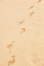 Traces bare feet sand beach Stock Images