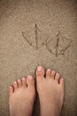 Traces of a bird and a human in the sand. Royalty Free Stock Photo