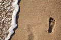 Traces of feet in the sand on the beach Royalty Free Stock Photo