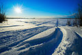 Traces of snowmobiles on the snow in  field . Royalty Free Stock Photo