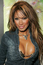 Traci bingham tracy bingham at champagne and bikinis hosted by geoff thomas designs and featuring his metallic bikinis geoff Stock Image