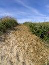 Track over grassy sand dune Stock Image