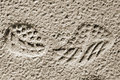Track shoes in the sand. Royalty Free Stock Photo