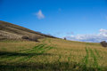 Tracks in the fields umbria italy Royalty Free Stock Photo