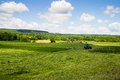Tractor cutting hay field Royalty Free Stock Photo
