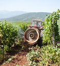 Tractor spraying vineyard field Stock Photography