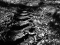 Tractor tire print on ground Royalty Free Stock Photo