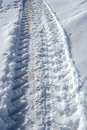 Tractor trace at snow Stock Photography