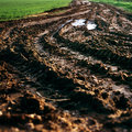 Tractor track mud field farming ecology by planting on a Royalty Free Stock Photo