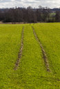 Tractor tracks on lush green field Stock Photos