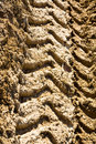 Tractor tyre tracks Stock Image