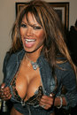 Tracy bingham traci bingham at champagne and bikinis hosted by geoff thomas designs and featuring his metallic bikinis geoff Stock Photos