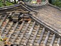 Traditional Bamboo Style Ceramic Roof Tiles, Seoul Royalty Free Stock Photo