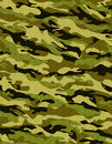 Traditional camouflage Royalty Free Stock Image