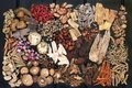 Traditional Chinese Herbs Royalty Free Stock Photo