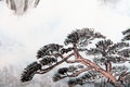Traditional chinese painting landscape pine tree and floating clouds Royalty Free Stock Photography