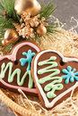 Traditional christmas gingerbread Royalty Free Stock Image