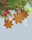 Traditional Christmas gingerbread cookie Royalty Free Stock Image