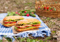 Traditional ciabatta bread sandwich lifestyle picnic lunch with vegetables Royalty Free Stock Photo